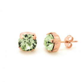 earrings  Victoria Cruz A3186-22T
