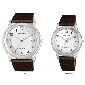 Couple watches   Citizen fe6011/aw1211