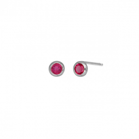 Small earrings victoria  cruz A3959-04HT