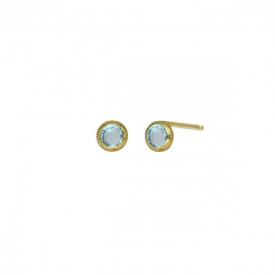 Small earrings victoria  cruz A3959-10DT